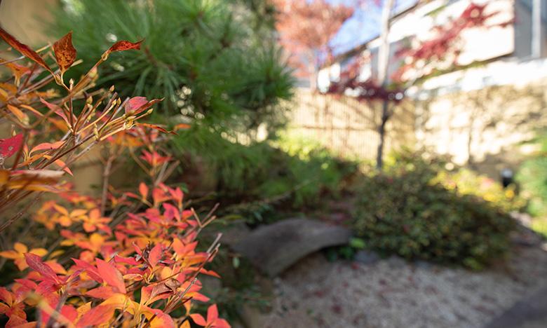 季節を感じられる中庭